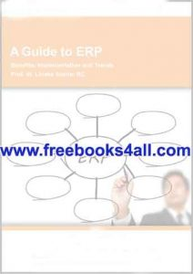 a-guide-to-erp
